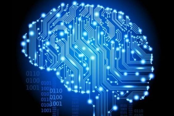 human_brain-comp